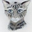 Meows by Astrikos
