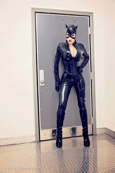 Catwoman Cosplay - Returns