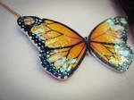 Orange Butterfly - Detail