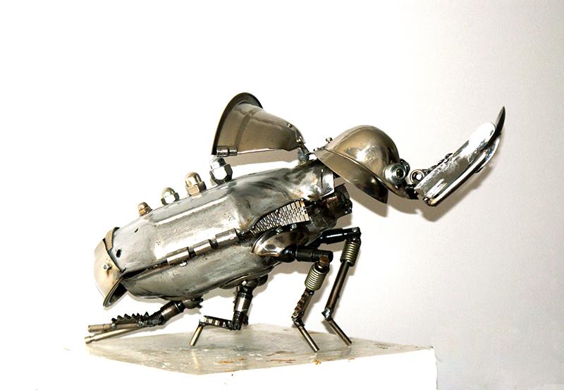 Rhinoceros beetle  2 by Muti-Valchev