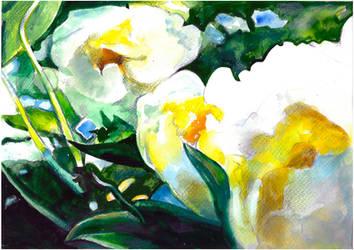 Flower composition by Muti-Valchev