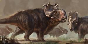 Pachyrhinosaurus speculative coat