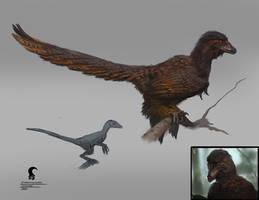 Sinornithosaurus full bod by RAPHTOR
