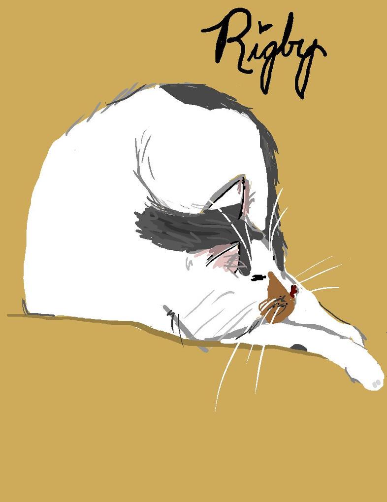 My cat by Sakurawish