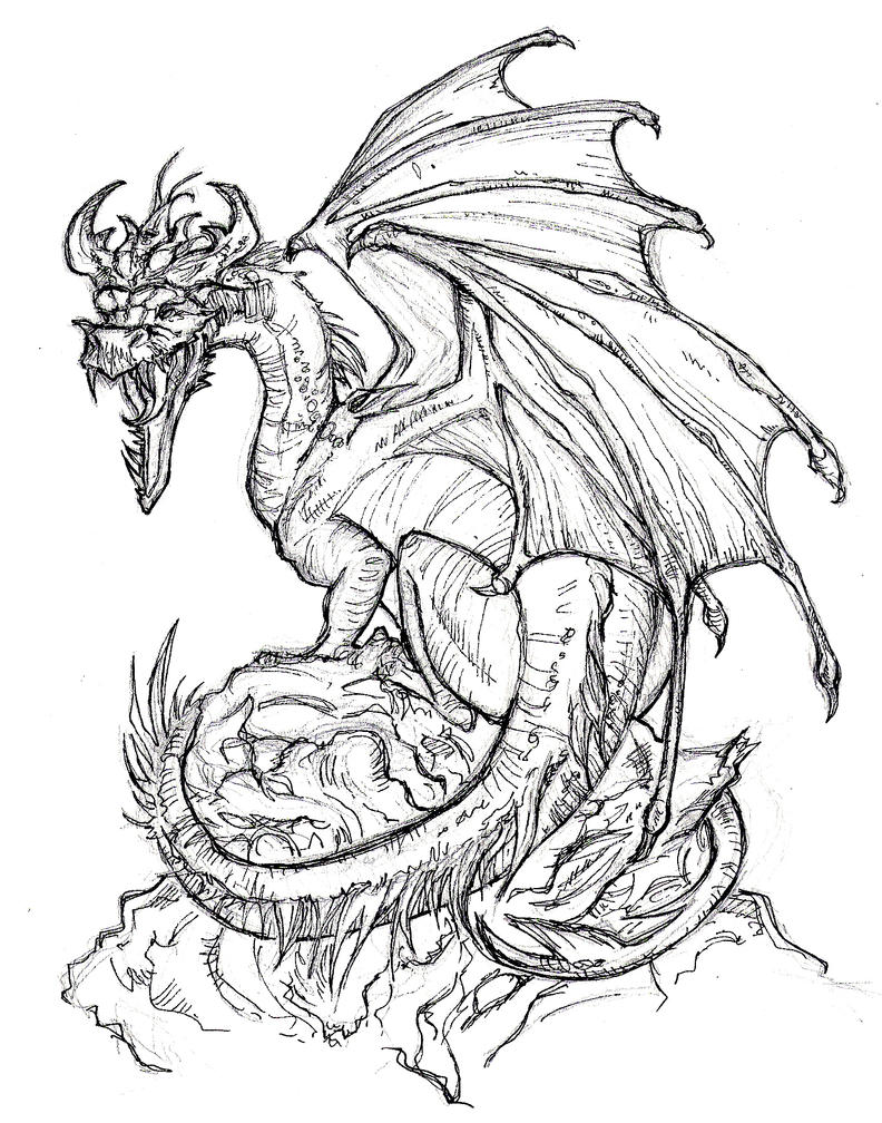 Line Drawing Dragon Tattoo : Dragon lineart by xxbluebird on deviantart