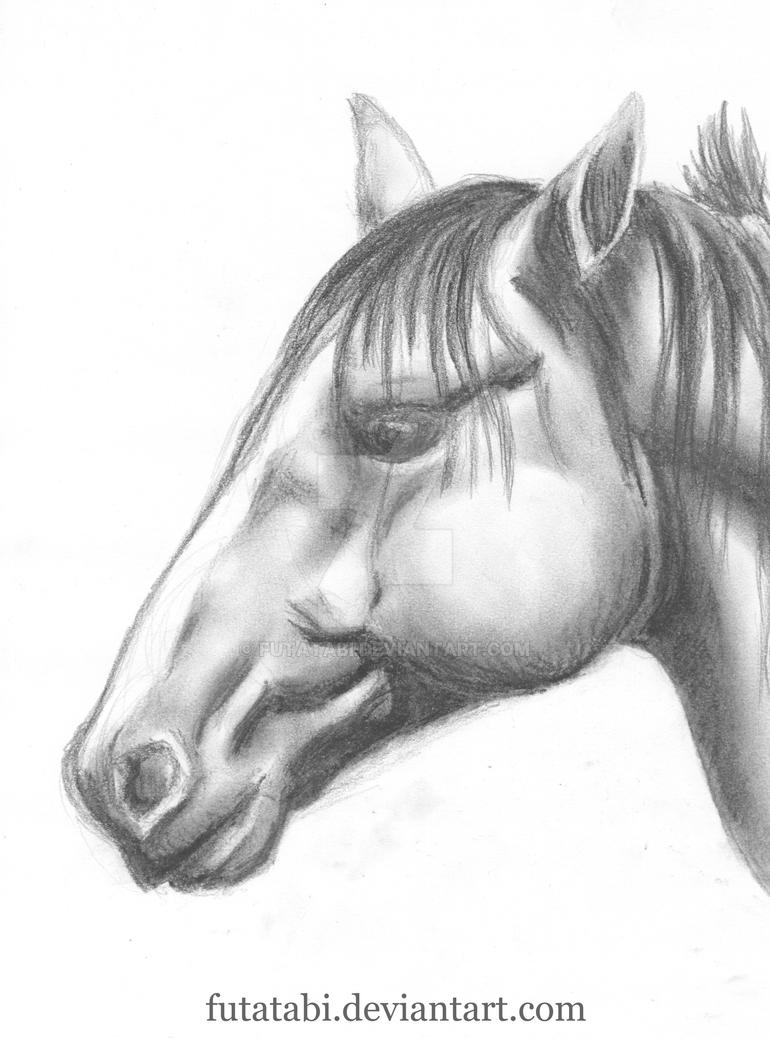 Horse with charcoal by futatabi