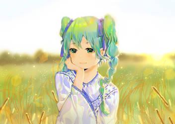 Field Miku