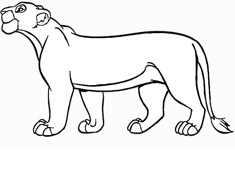 Lioness bases favourites by theprowlinglioness on deviantart for Lioness coloring pages