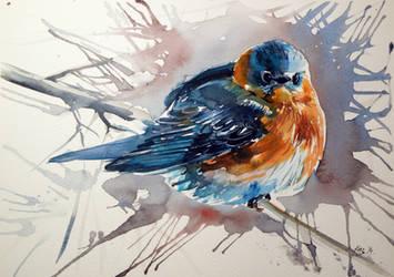 Bird by kovacsannabrigitta