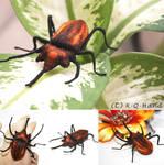 Beetle - Hand Embroidery