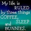 A life ruled