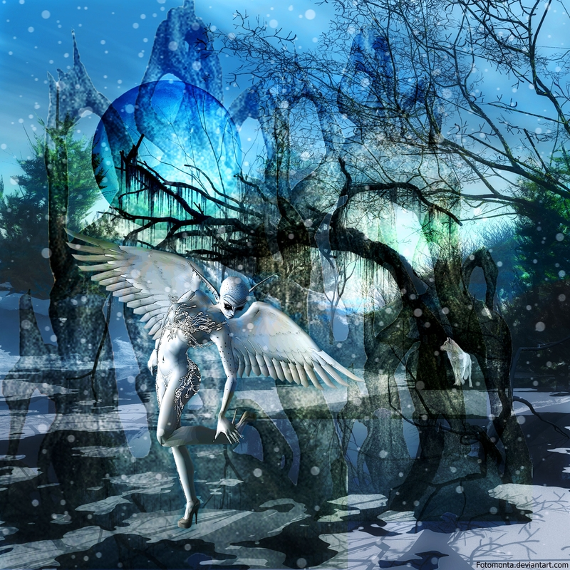 Wonder Of Winter by Fotomonta