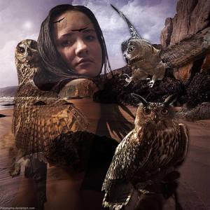 Queen Of Owls by Fotomonta