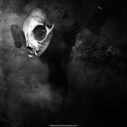 Dark Threat by Fotomonta