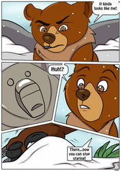 The Bear of Transformation 2/7 by marillon954