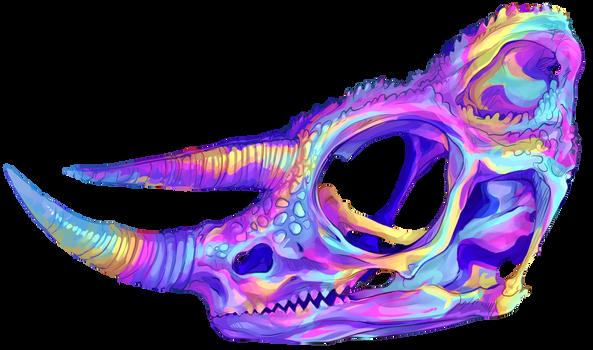 jacksons chameleon skull