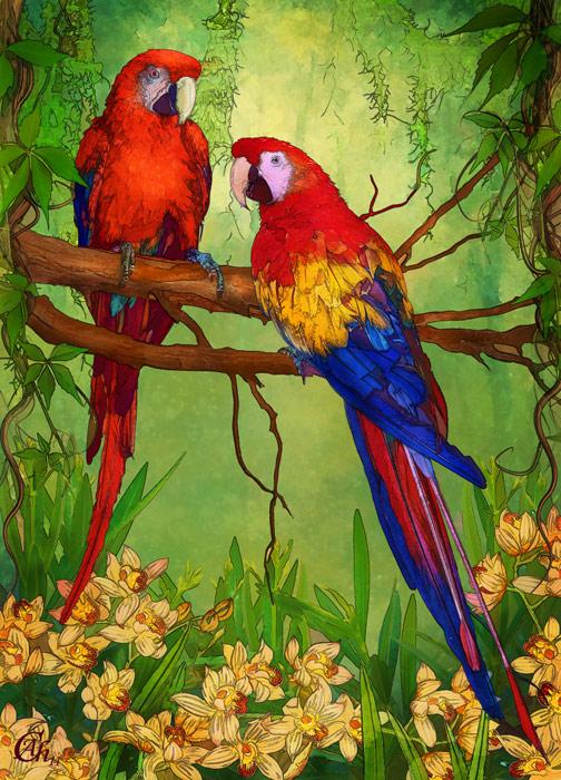 Parrots by AliaChek