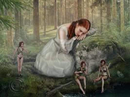 Fairies Conversation by AliaChek