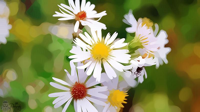 sunny flower by freakenpr