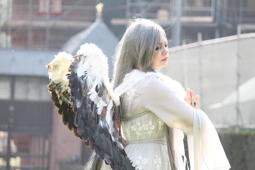 Angel stock 27