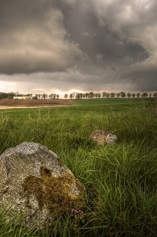 Moments before storm.. by Buszujacy-w-zbozu