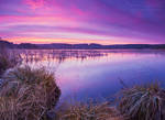 The lake IV