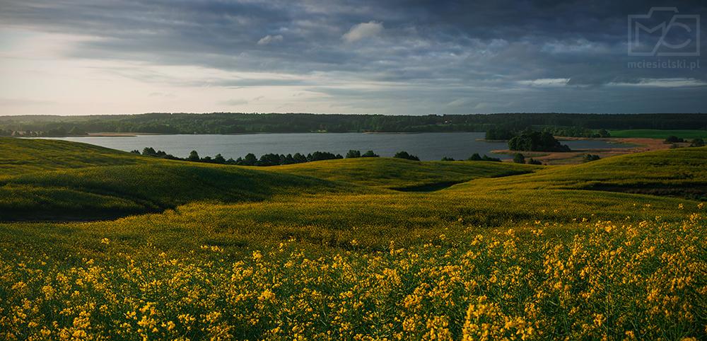 Morning by the lake by Buszujacy-w-zbozu
