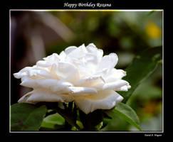 Happy Birthday Roxana by David-A-Wagner
