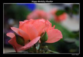 Happy Birthday Heather by David-A-Wagner