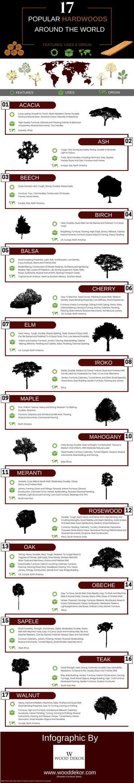 17 Popular Hardwoods Around the World Infographic by wooddekor