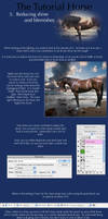 The Tutorial Horse- 5. Deshine