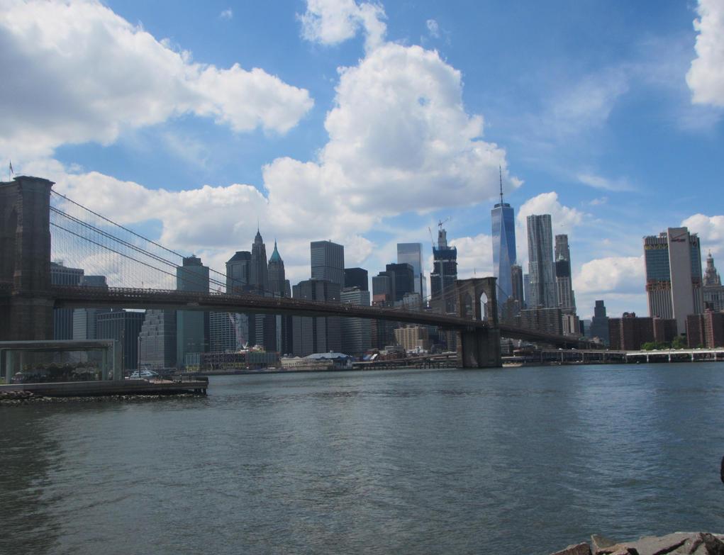 New York by SnowshadeOwO