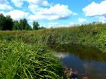 Chakhlovitsa river 2