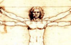 humanmarvel's Profile Picture