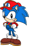 Sonic the Plumberhog