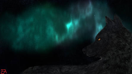 The Sun of the Wolf