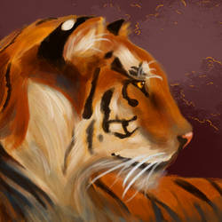 Multiply Tiger
