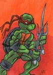 Raphael The Best Turtle SC