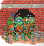 Brace Yourselves Ninja Turtles