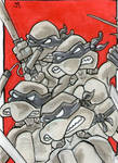 TMNT sketch card