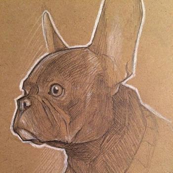 Danger Dog. by Vanjamrgan