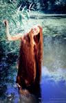 Mermaid's dreams