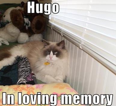 Hugo in Loving Memory by PhantomisErik