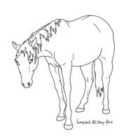 Shy Horse Lineart by shy-fox