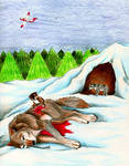 Stop Aerial Wolf Hunting