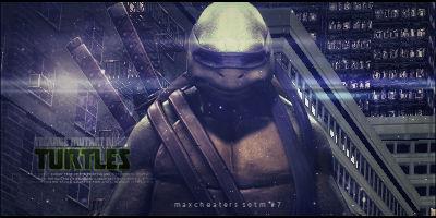 Teenage Mutant Ninja Turtles Signature