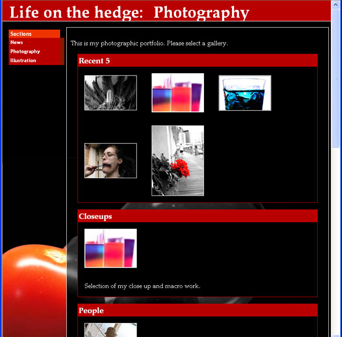 Website Preview: Photo Gallery