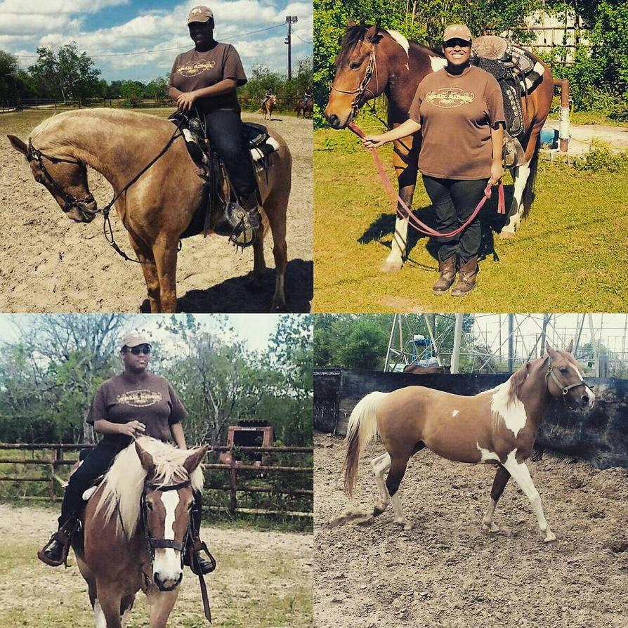 Sunday HorseDay~ by 2009abc