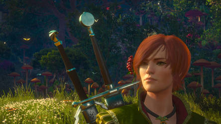 The Witcher 3 - Shani