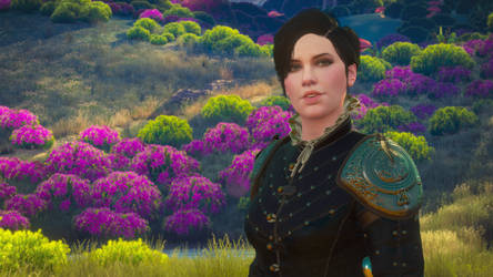 The Witcher 3 - Syanna
